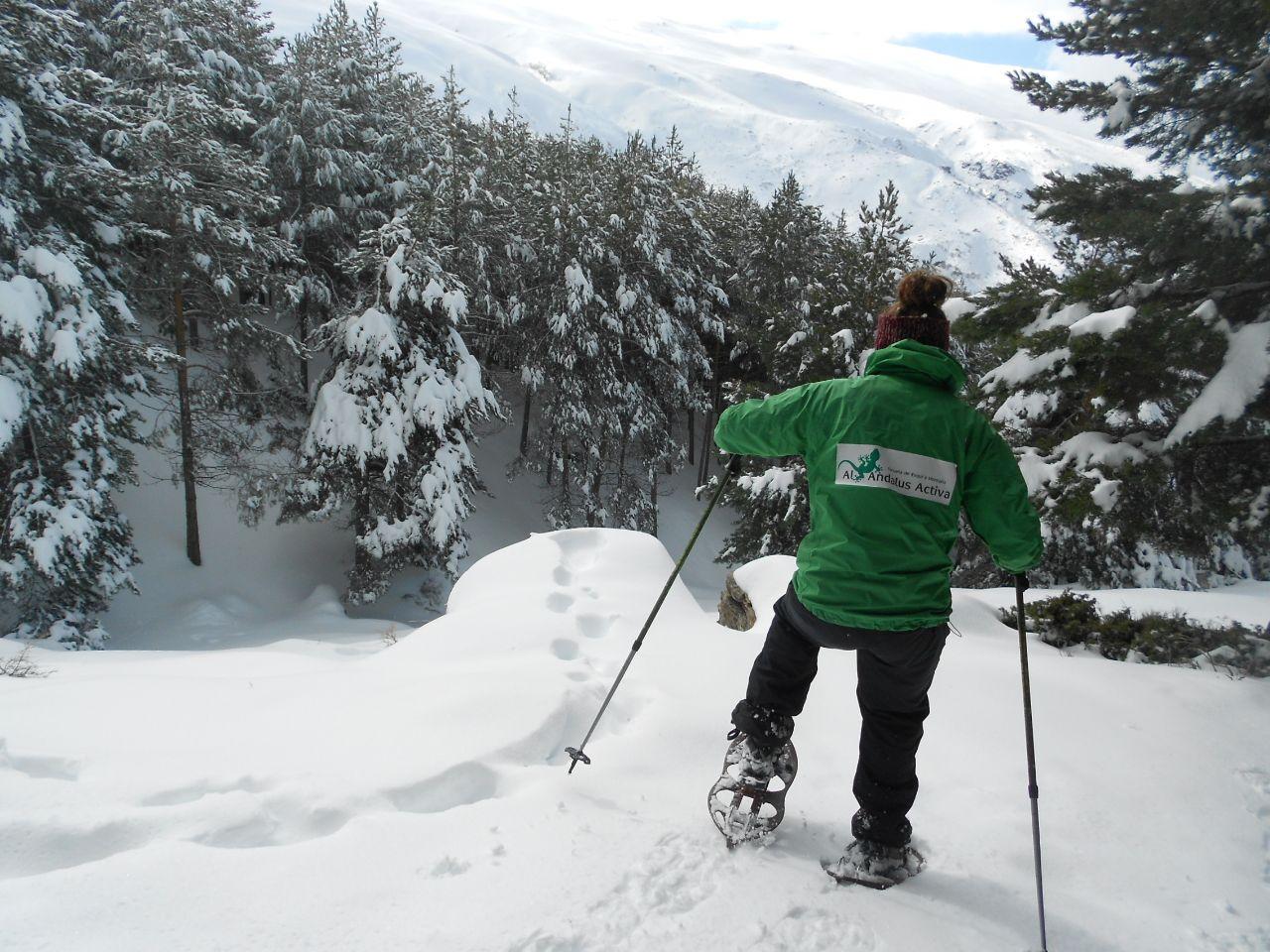 raquetas en sierra nevada