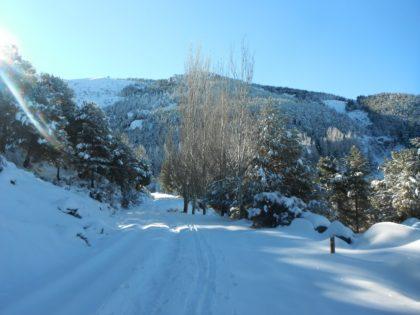 Esqui de fondo en sierra nevada